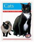 PM Orange: Cats (PM Non-fiction) Levels 15, 16 x 6