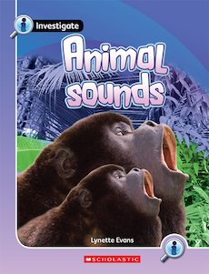 Investigate: Animal Sounds x 6