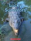 Connectors: Lucky Survivors x 6