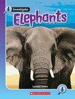 Investigate: Elephants x 6