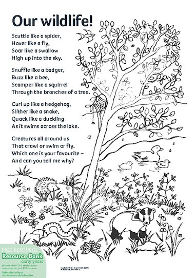 Our wildlife! poem – FREE Early Years teaching resource - Scholastic