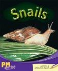 Snails (PM Purple/Gold) Levels 20, 21