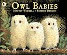 Owl Babies x 6