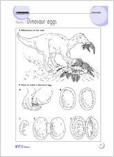 Theme 7: Dinosaur eggs