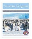 PM Silver: Antarctic Penguins (PM Non-fiction) Levels 23, 24 x 6