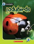 Investigate: Ladybirds x 6