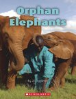 Connectors: Orphan Elephants x 6