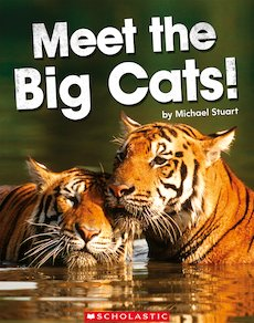 Guided Readers: Meet the Big Cats! x 6