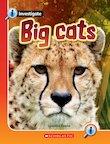 Big Cats