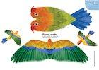 Paper model animals: Parrot
