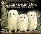 Ulchabháin Óga (Owl Babies)