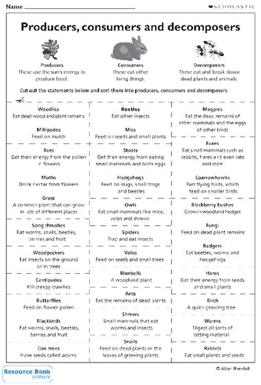 Printables Producers And Consumers Worksheet producer consumer decomposer worksheet davezan producers consumers and decomposers abitlikethis