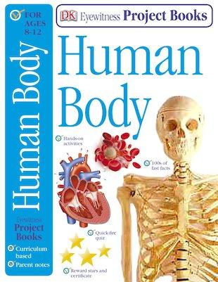 eyewitness human body project book scholastic kids 39 club. Black Bedroom Furniture Sets. Home Design Ideas