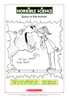 Horrible Science: Colour the Hippo