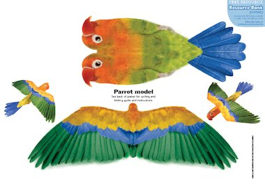 ... animals: Parrot – FREE Primary KS1 teaching resource - Scholastic