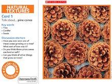 Natural textures circle-time cards