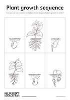 Plant growth sequence