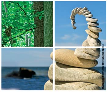 Montage of forest and pebble sculpture