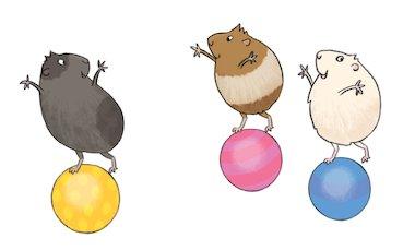 Balancing guinea pigs