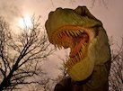 Most complete skeleton of a Tyrannosaurus rex discovered