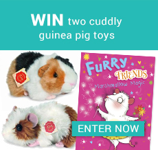 WIN two cuddly guinea pig toys
