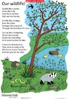Our wildlife! poem in colour