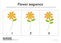 Flower sequence