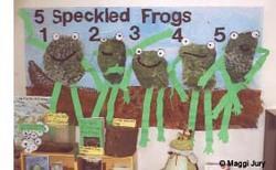 frog display