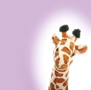 Giraffe © Eriklam/www.istockphoto.com