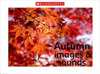 Autumn images & sounds