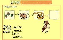 Food chain game