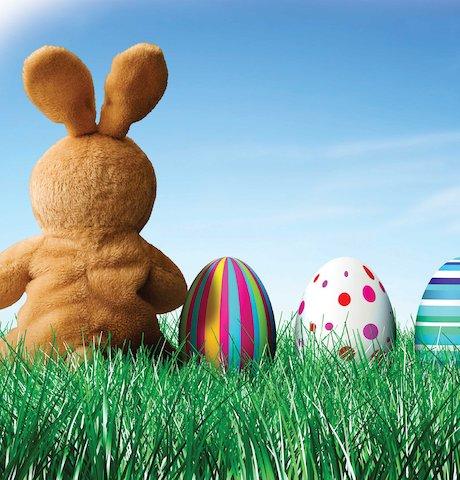 Easter bunny © Kativ/www.istockphoto.com