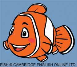 Fin the fish