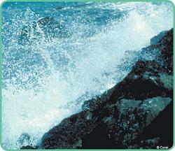 sea and rocks image