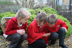 Children working outdoors